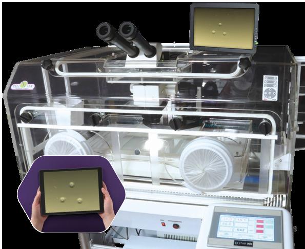 Cell-Tek Microscope Chambers